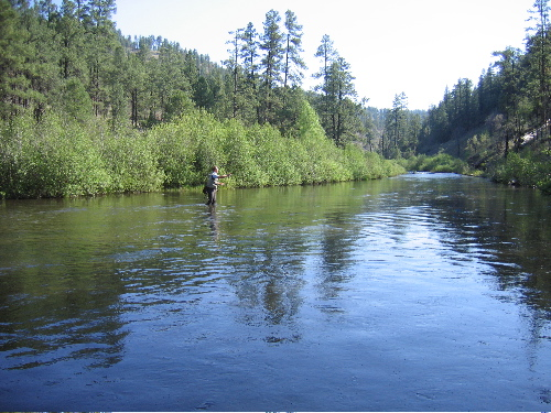 Gallery black river arizona powered by photopost for Arizona fly fishing