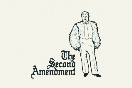 What is a good thesis on the second amendment...?