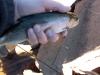 Jeff_s_fishing_pic_s_107.jpg