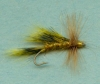 W1_Yellow_Squirrel_Sedge.jpg