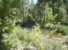 chevelon_creek4.jpg